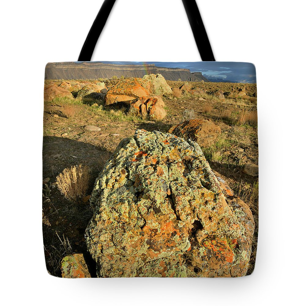 Book Cliffs Tote Bag featuring the photograph Toad Rock Under Book Cliff Storm by Ray Mathis