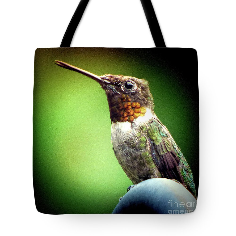 Tote Bag featuring the photograph Totem Animal Book Hummingbird by Laura Atkinson