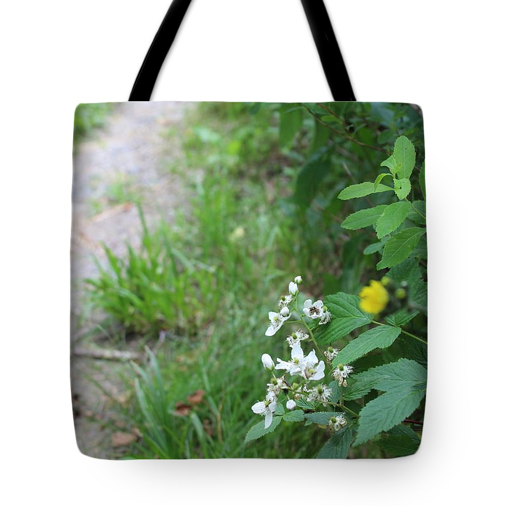 Trails Tote Bag featuring the photograph Trails by Brittany Galipeau