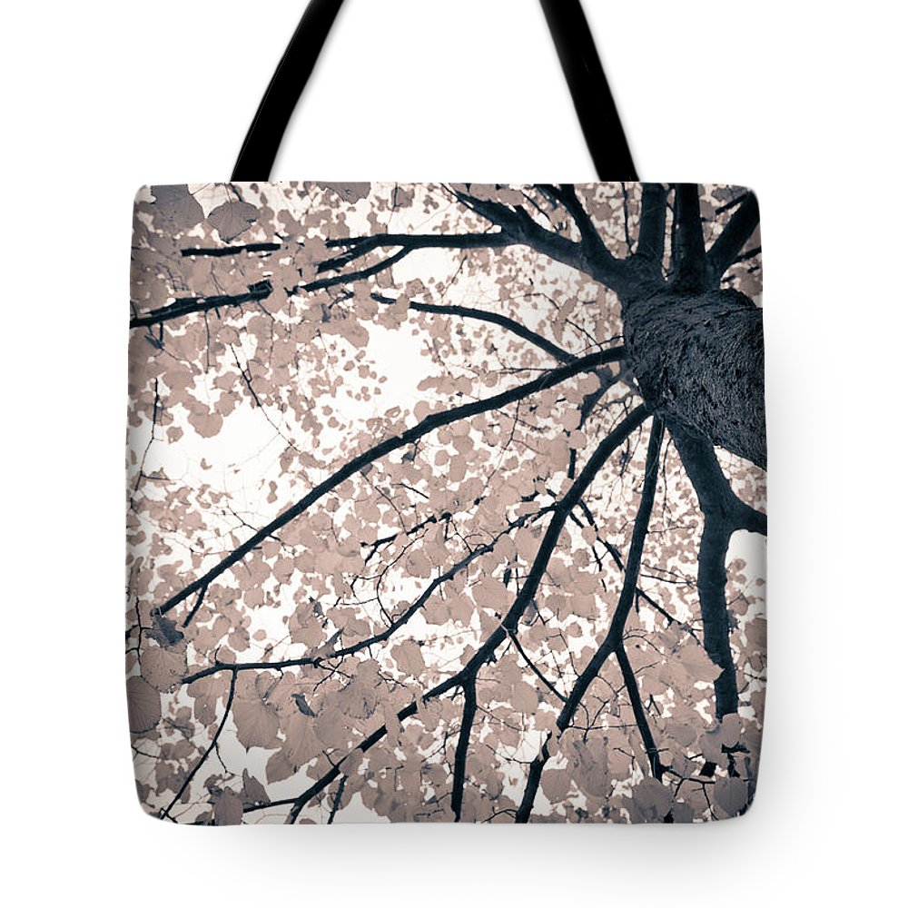 Spray Tote Bag featuring the photograph Tree Branches by Gianlucabartoli