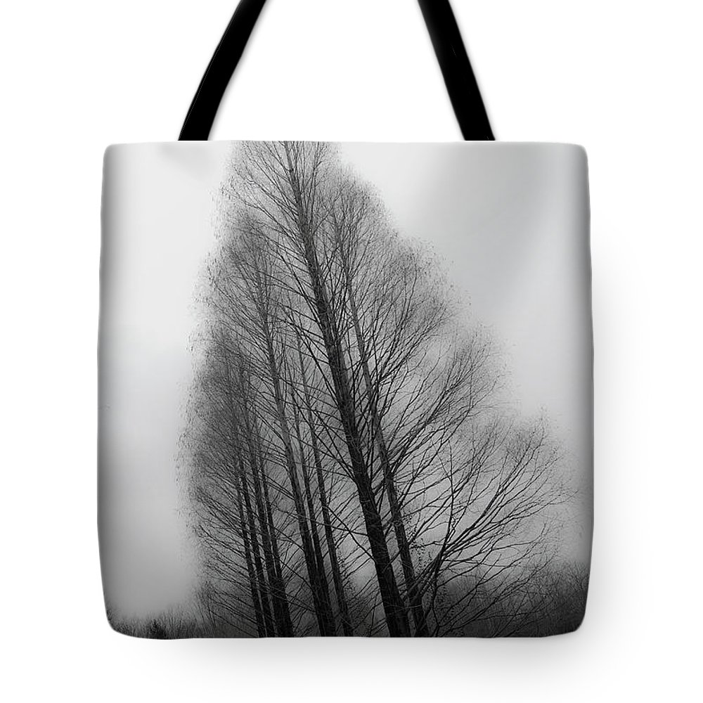 Tranquility Tote Bag featuring the photograph Trees In Winter Without Leaves by Marie Hickman