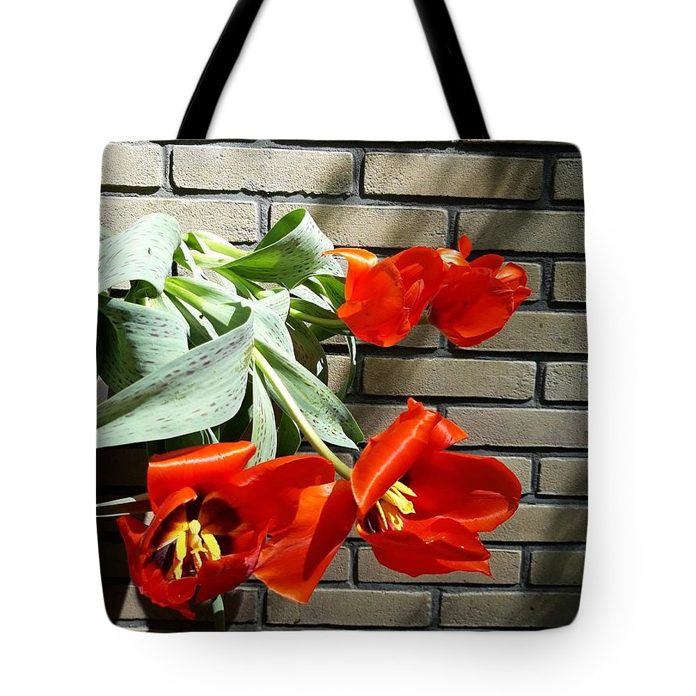 Tulips Tote Bag featuring the photograph Tulips under tree shadow by Beril Sirmacek