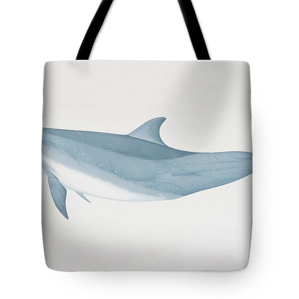 White Background Tote Bag featuring the digital art Tursiops Truncatus, Bottlenose Dolphin by Martin Camm