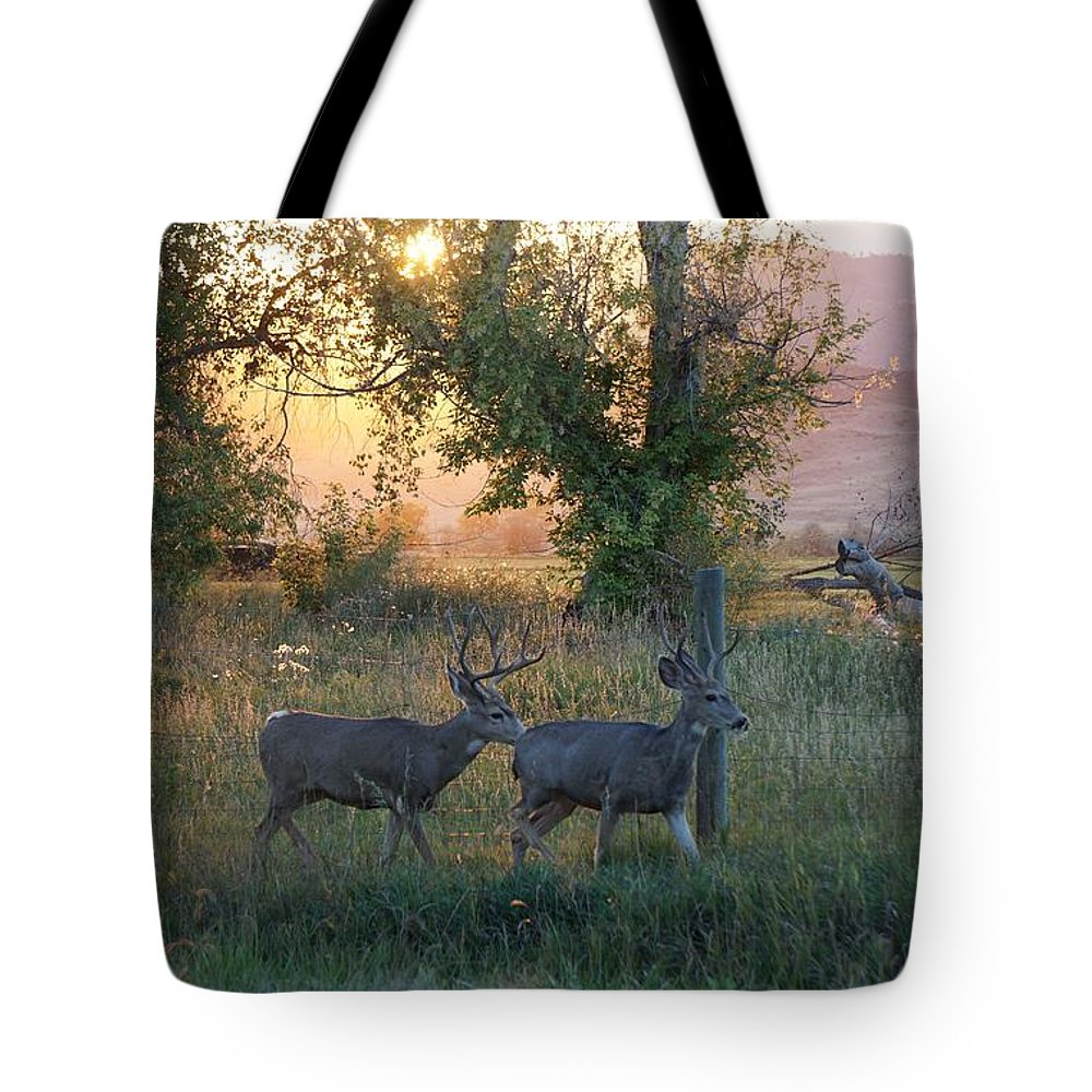 September Tote Bag featuring the photograph Two Deer Sunset by Susan Brown