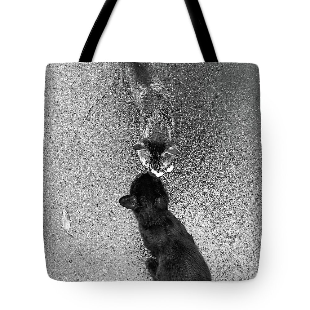 Pets Tote Bag featuring the photograph Two Kittens Which Kiss by Photographer, Loves Art, Lives In Kyoto