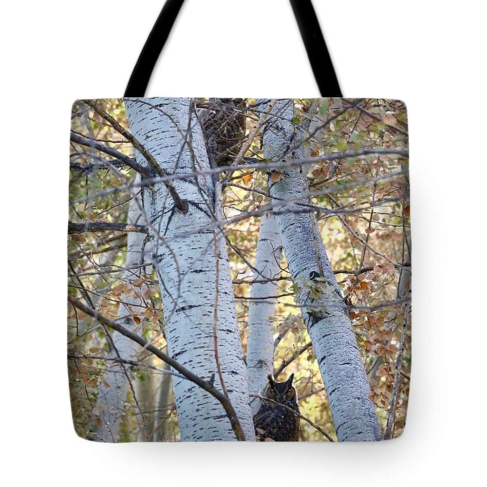 Owl Tote Bag featuring the photograph Two Owls On Autumn Branches by Carol Groenen