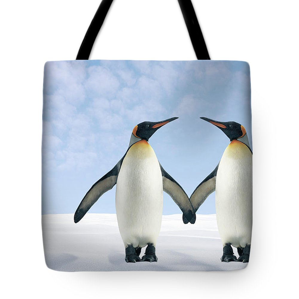 Animal Themes Tote Bag featuring the photograph Two Penguins Holding Hands by Fuse