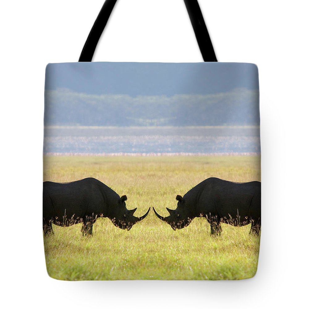 Animal Themes Tote Bag featuring the photograph Two White Rhinoceros Face To Face On by Grant Faint