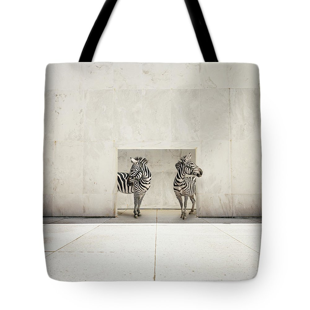 Out Of Context Tote Bag featuring the photograph Two Zebras At Doorway Of Large White by Matthias Clamer