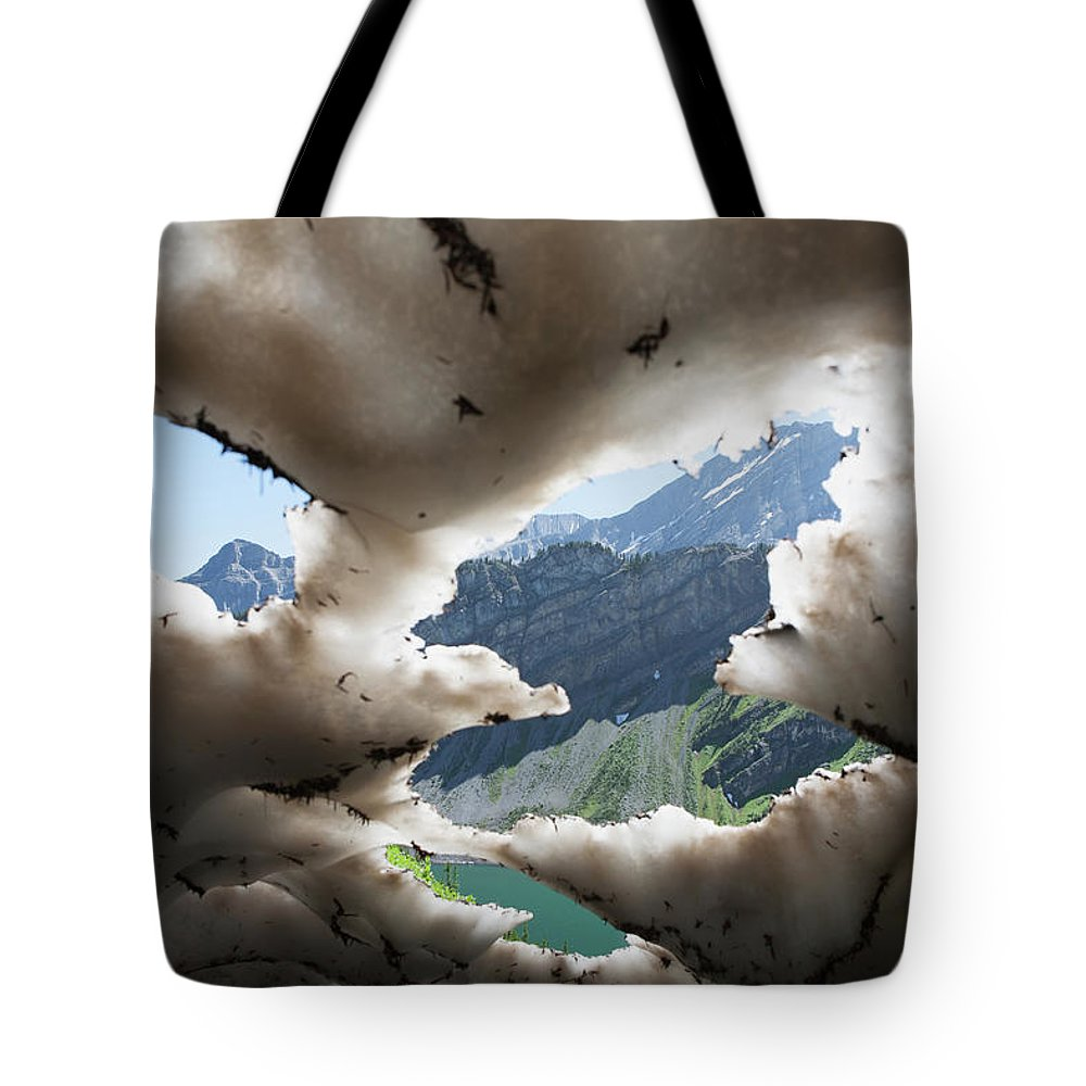 Scenics Tote Bag featuring the photograph Underneath A Melting Snow Pack With by Michael Interisano / Design Pics