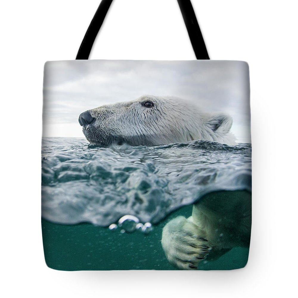 Paw Tote Bag featuring the photograph Underwater Polar Bear In Hudson Bay by Paul Souders