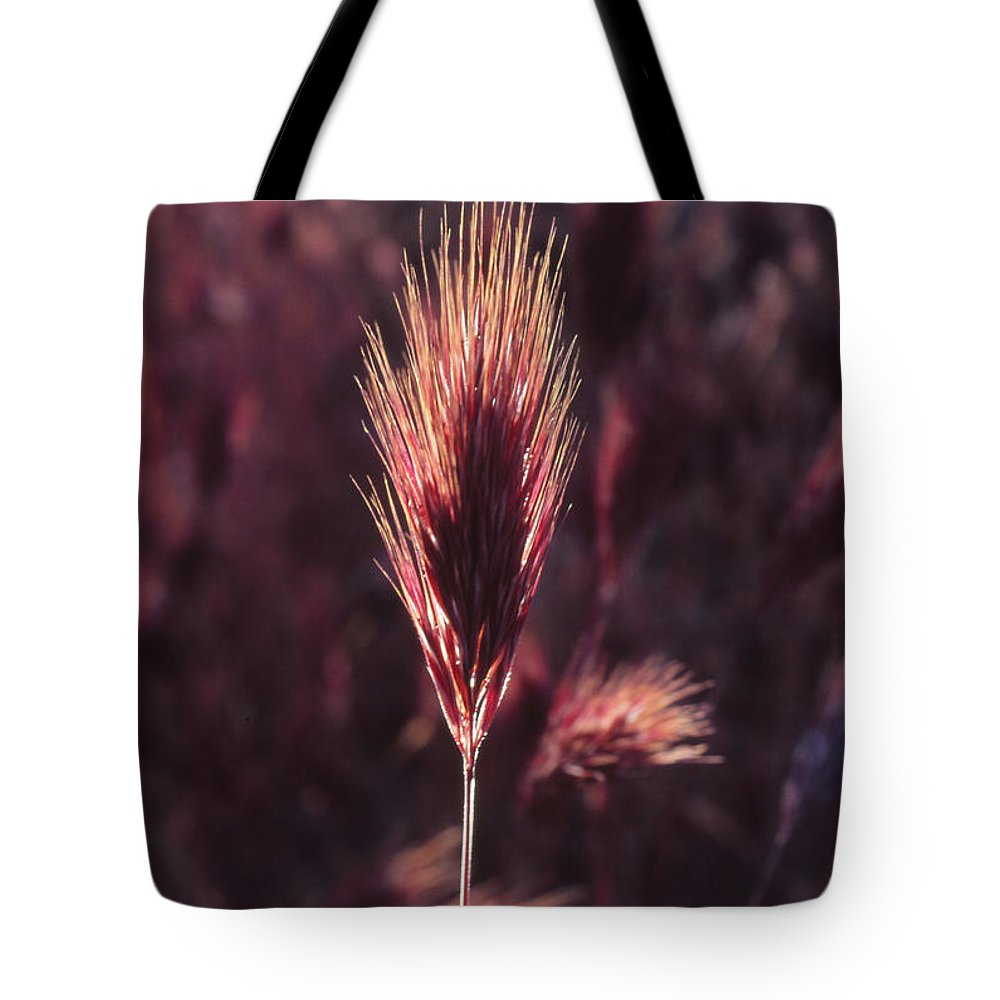 Tote Bag featuring the photograph Untitled by Randy Oberg