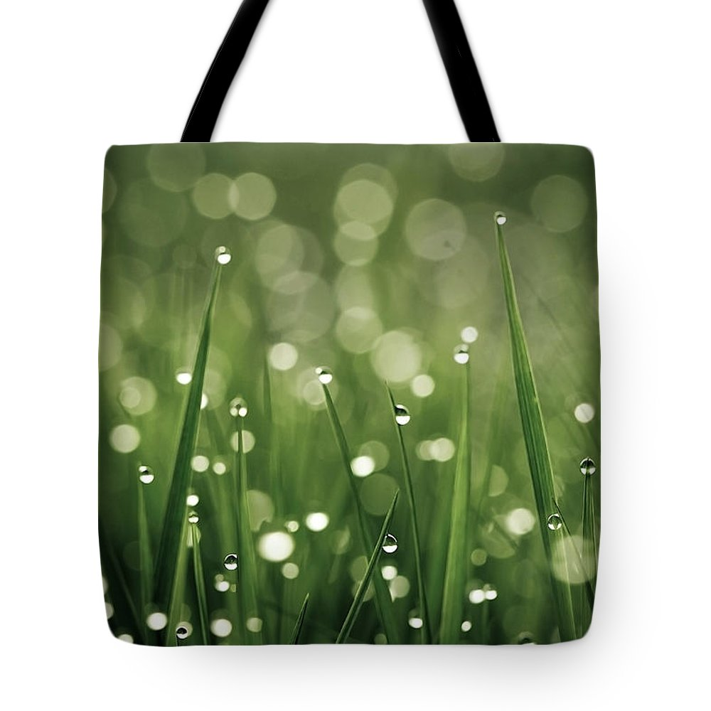 Grass Tote Bag featuring the photograph Water Drops On Grass by Florence Barreau