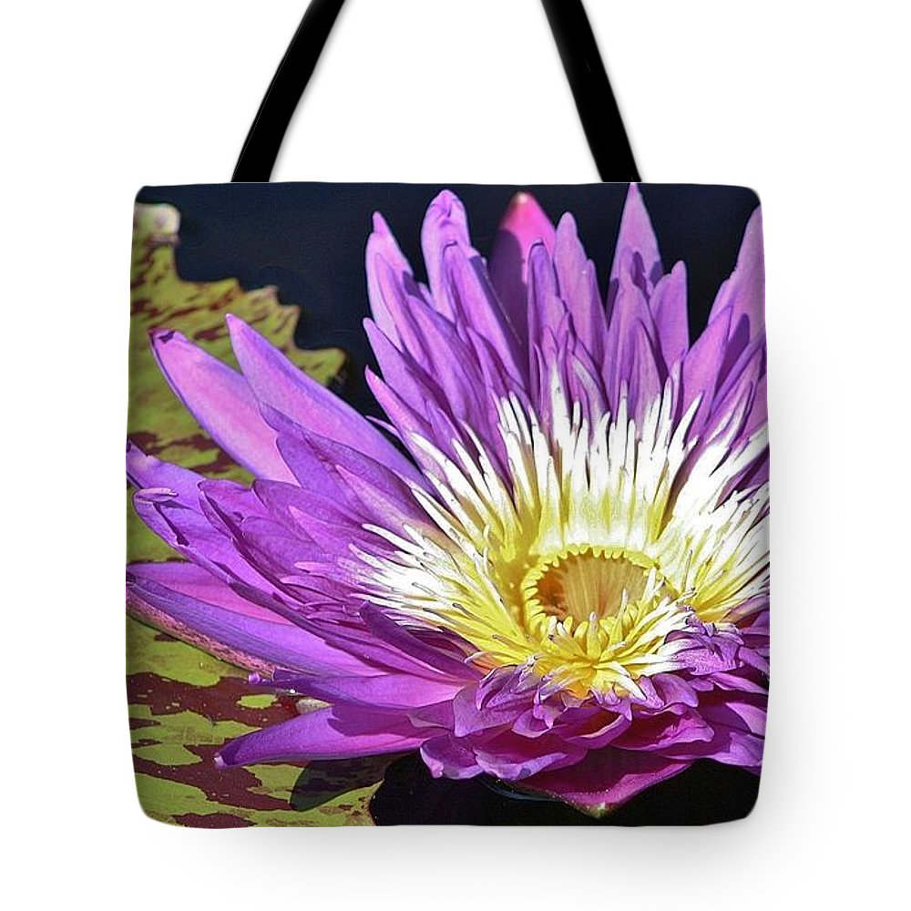 Nature Tote Bag featuring the photograph Water Lily On The Pond by Bruce Bley