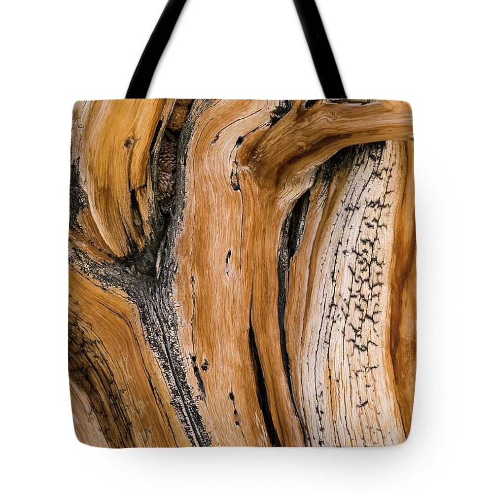 Weathered Tote Bag featuring the photograph Weathered Wood Of Ancient Bristlecone by Kevin Schafer