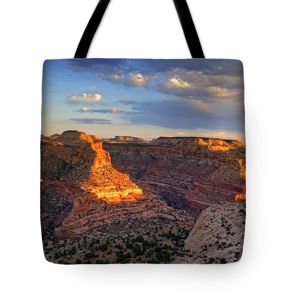 Scenics Tote Bag featuring the photograph Wedge Overlook by Yvonne Baur