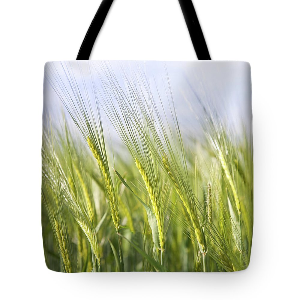 Scenics Tote Bag featuring the photograph Wheat Field by Peter Chadwick Lrps