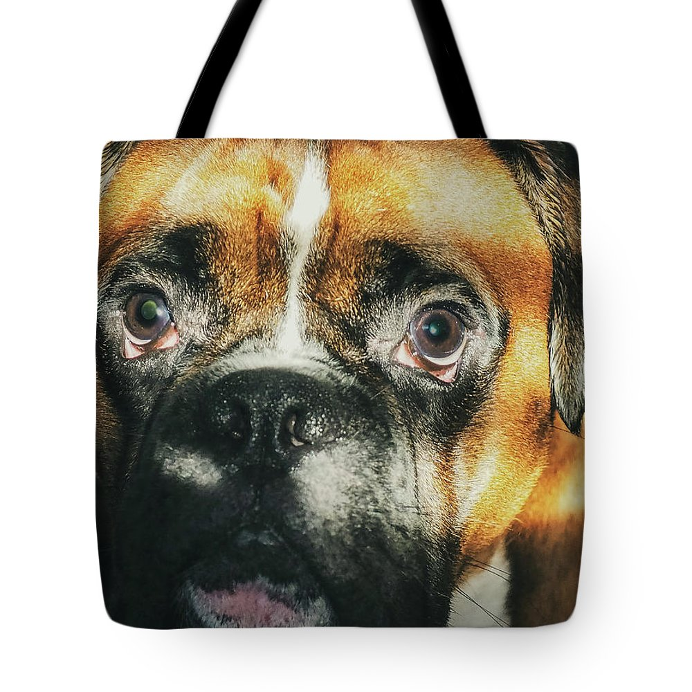 Dog Tote Bag featuring the photograph Where'd Everybody Go by CWinslow Shafer