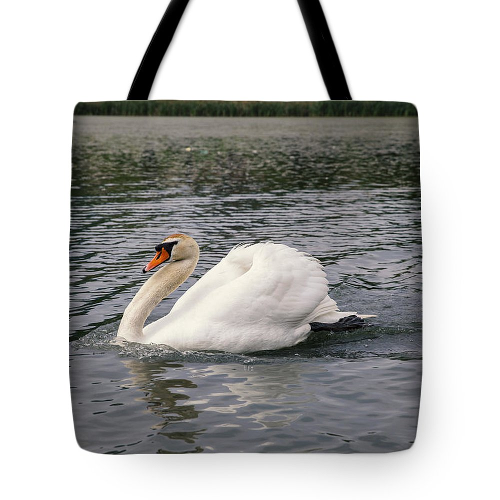 Swan Tote Bag featuring the photograph White Swan On Lake by Dejan Jekic
