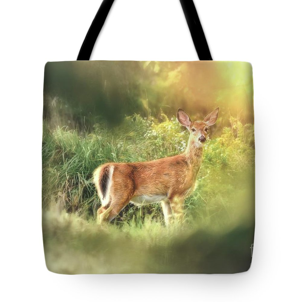 Deer Tote Bag featuring the photograph White Tail by Heather Hubbard