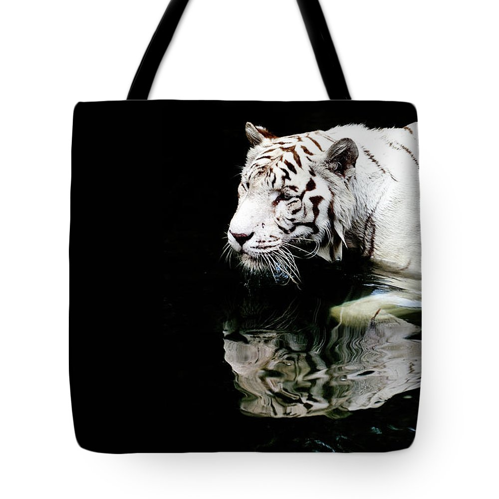 Three Quarter Length Tote Bag featuring the photograph White Tiger In Water by Carlina Teteris