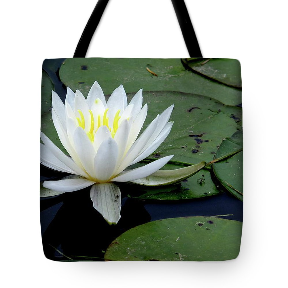 Photography Tote Bag featuring the photograph White Water Lilly by Jeffrey PERKINS