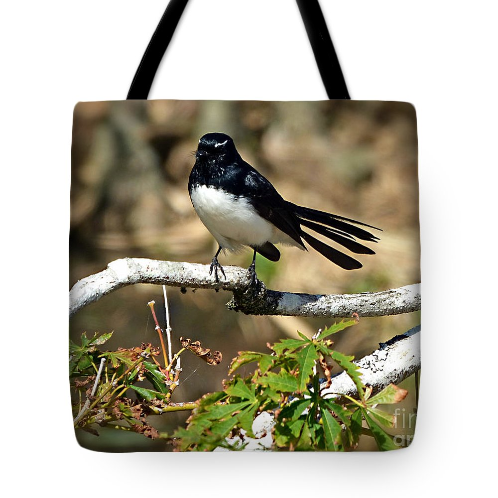 Willy Wagtail Tote Bag featuring the photograph Willy Wagtail #1 by Trudee Hunter