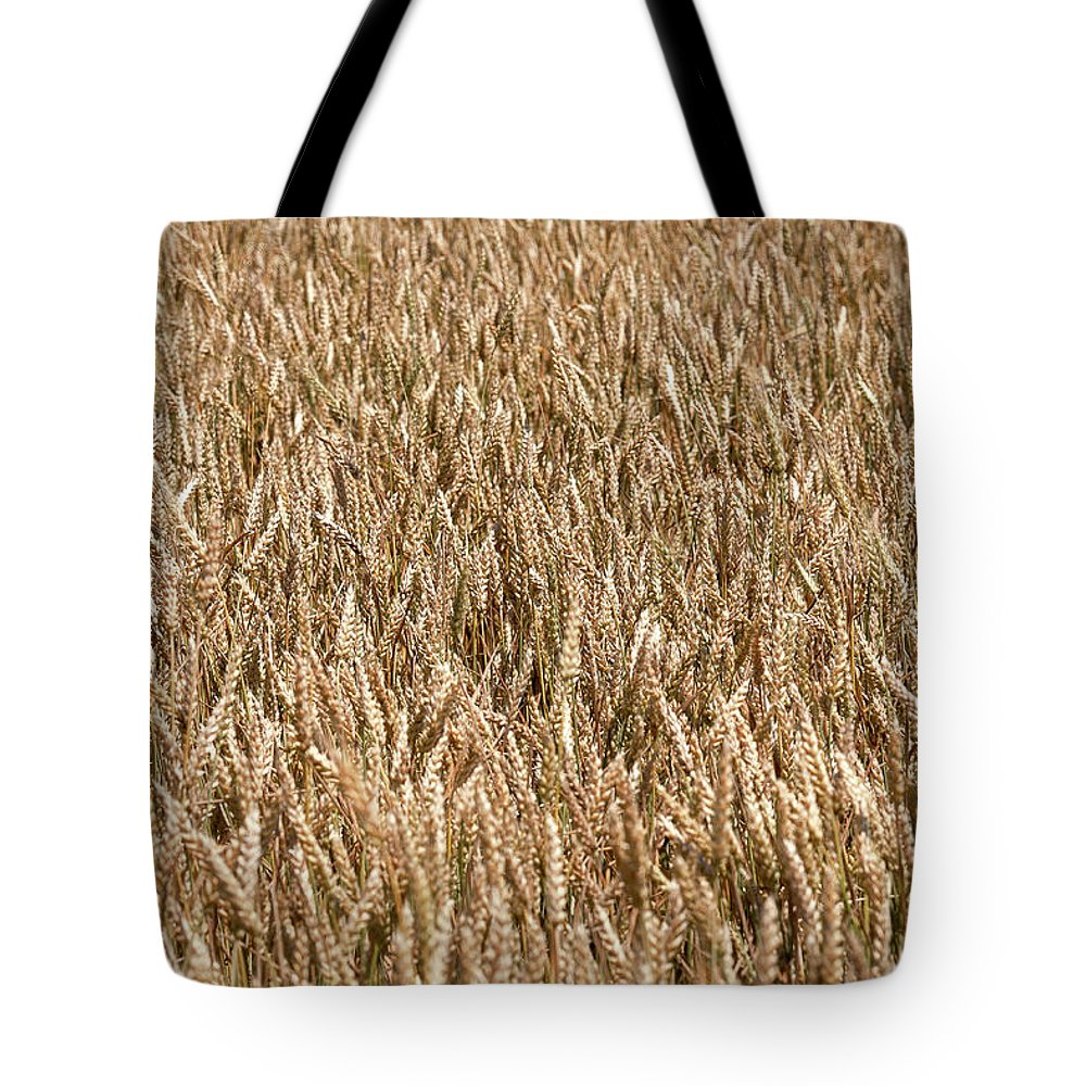 Field Tote Bag featuring the photograph Wonderful Wheat by Todd Klassy