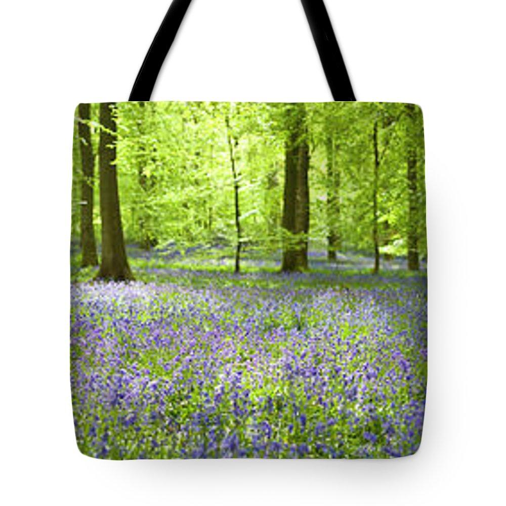 Scenics Tote Bag featuring the photograph Wonderful Woodland by Pkfawcett