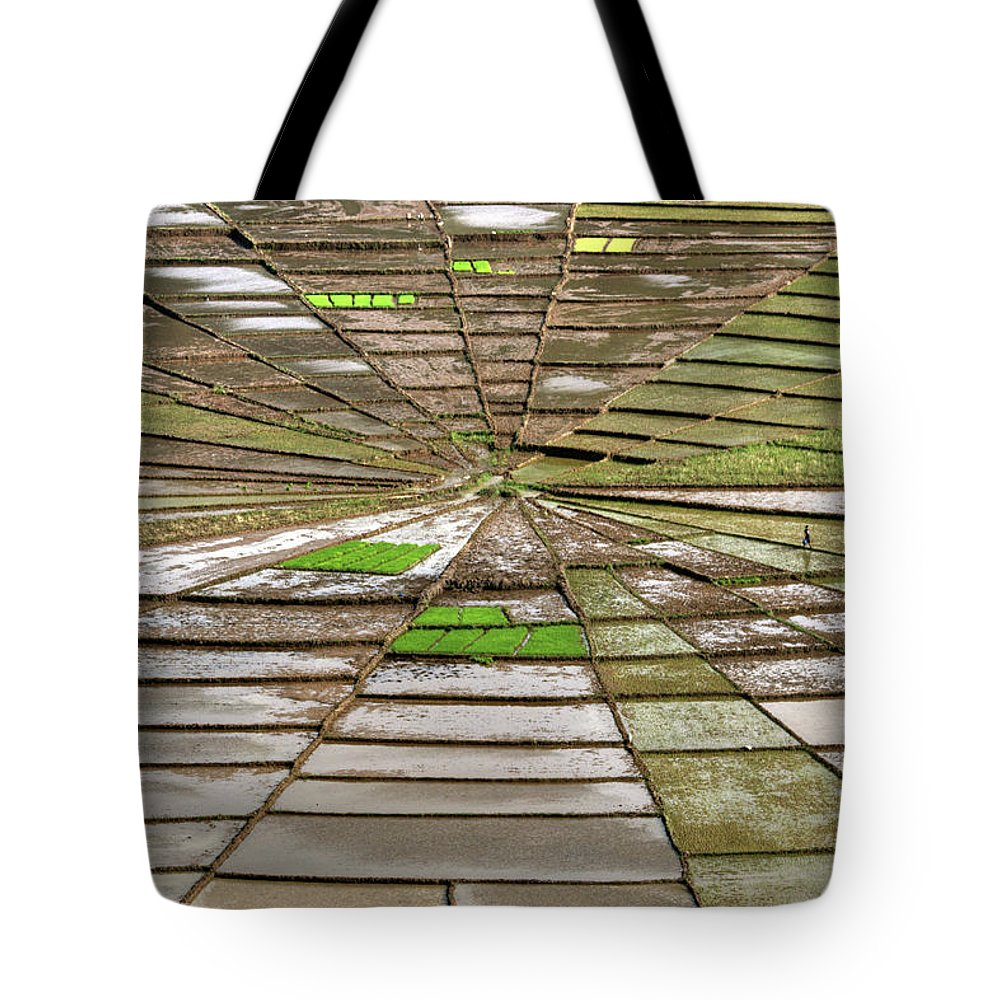 Working Tote Bag featuring the photograph Working The Spiderwebs by Photo ©tan Yilmaz