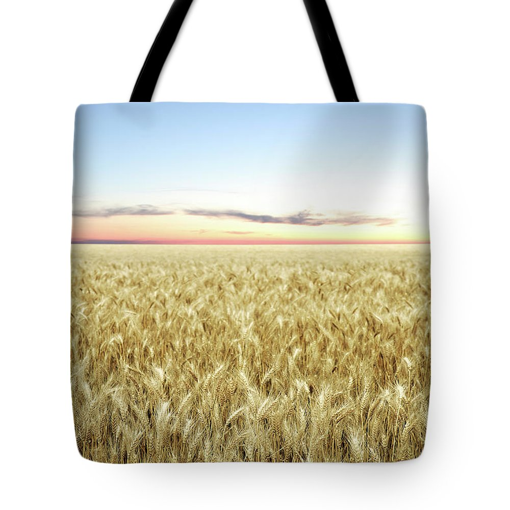 Scenics Tote Bag featuring the photograph Xxl Wheat Field Twilight by Sharply done