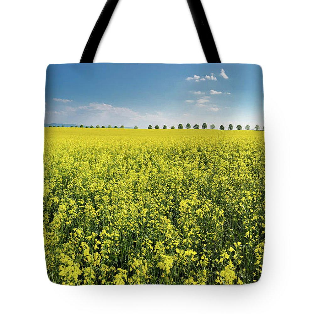 Canola Tote Bag featuring the photograph Yellow Canola Field And Blue Sky Spring Landscape by Matthias Hauser