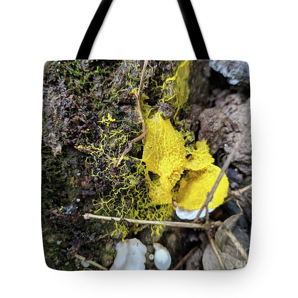 Fungus Tote Bag featuring the photograph Yellow Enveloping White by Hunted Gatherings