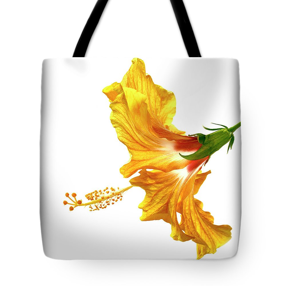 Hibiscus Tote Bag featuring the photograph Yellow Hibiscus by Christopher Johnson