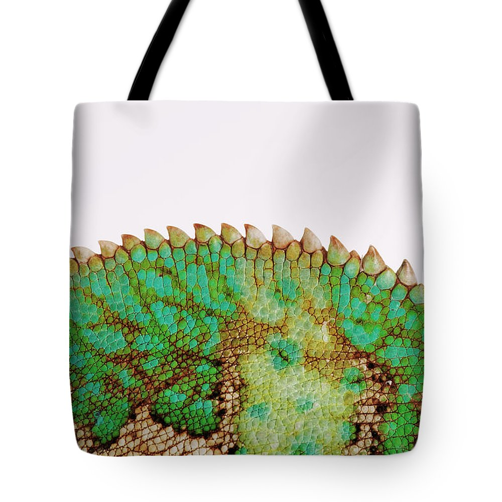 White Background Tote Bag featuring the photograph Yemen Chameleon, Close-up Of Skin by Martin Harvey