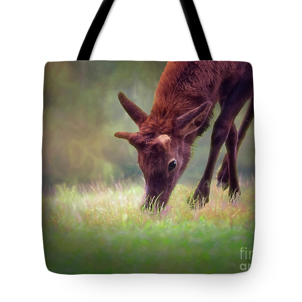 Kathy Weaver Tote Bag featuring the photograph Young Elk Grazing by Kathy Weaver