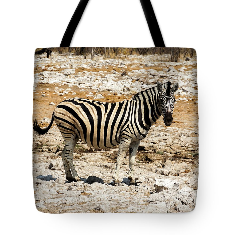 Animal Themes Tote Bag featuring the photograph Zebra And White Rocks by Taken By Chrbhm