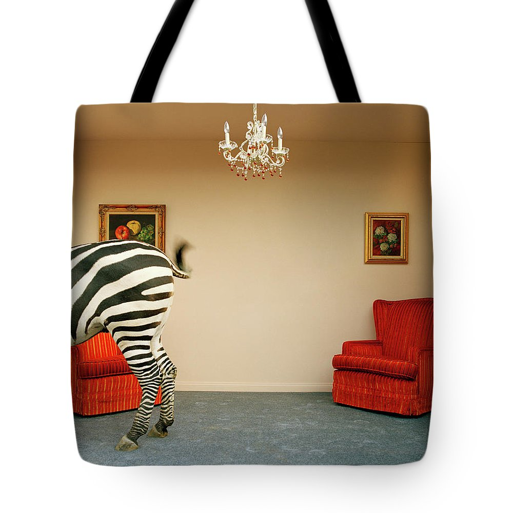 Out Of Context Tote Bag featuring the photograph Zebra In Living Room Swishing Tail by Matthias Clamer