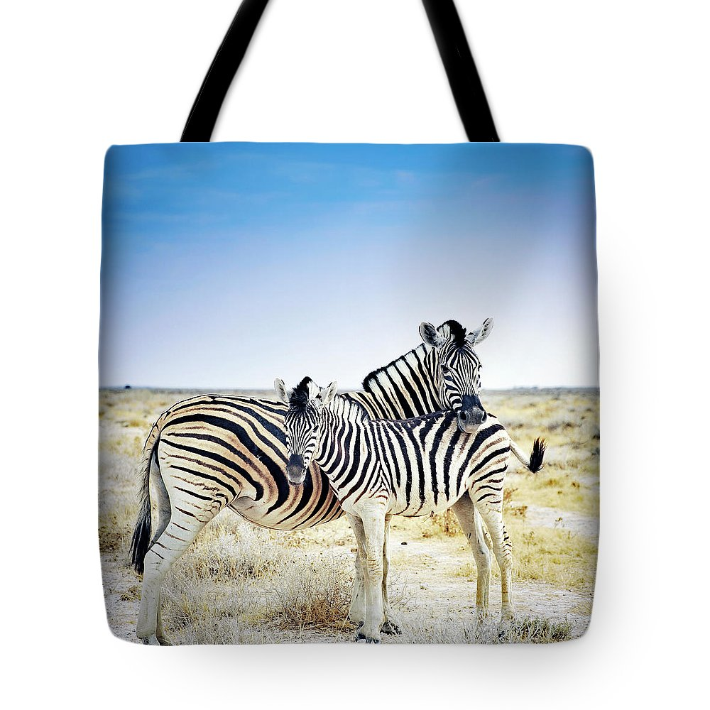 Horse Tote Bag featuring the photograph Zebra Mother And Her Foal In Etosha by Brytta