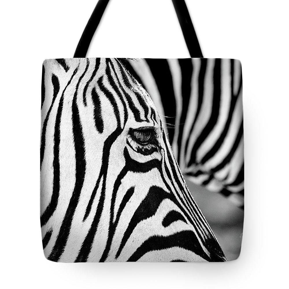 Animal Themes Tote Bag featuring the photograph Zebra Stripes by Chris Kolaczan