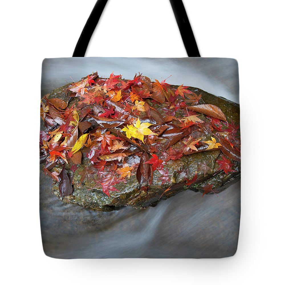 Tranquility Tote Bag featuring the photograph Zen Garden At Eikan-do Temple In Kyoto by B. Tanaka