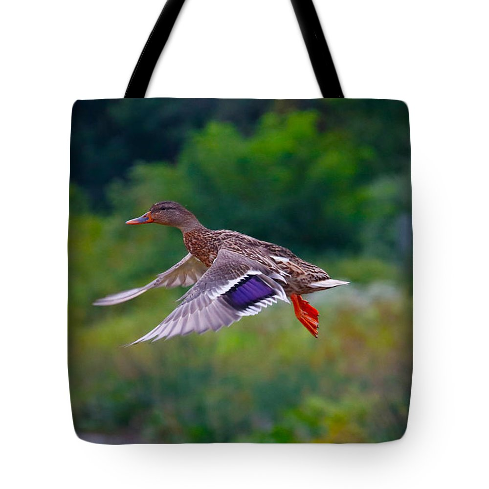 Tote Bag featuring the photograph Jump by Tony Umana