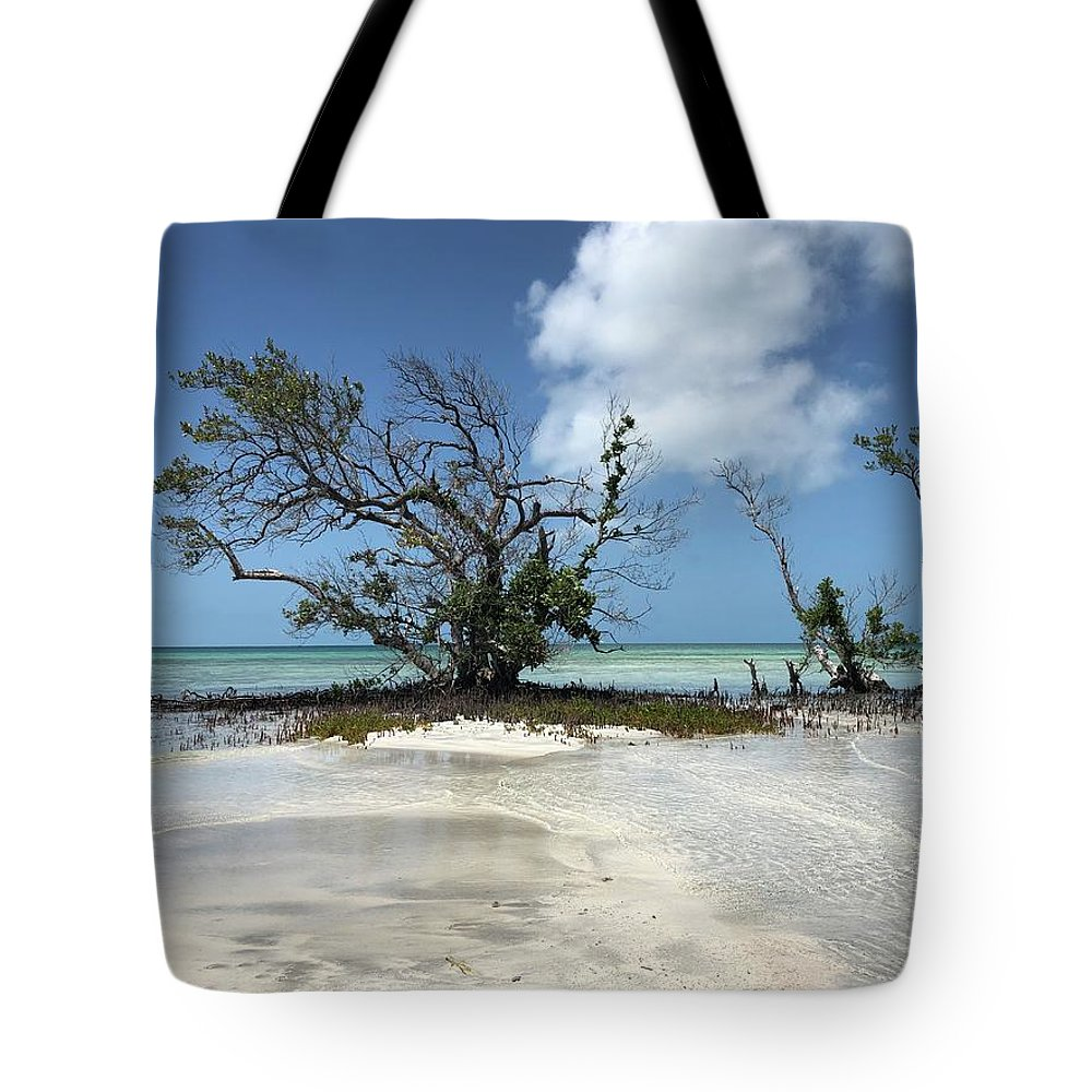 Key West Florida Waters Tote Bag featuring the photograph Key West Waters by Ashley Turner