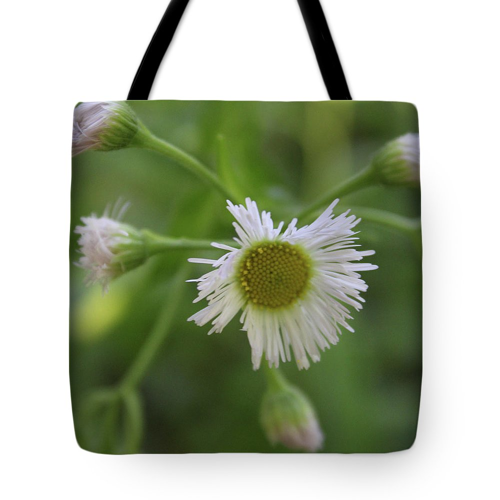 Nature Tote Bag featuring the photograph White Wildflower by Holly Morris