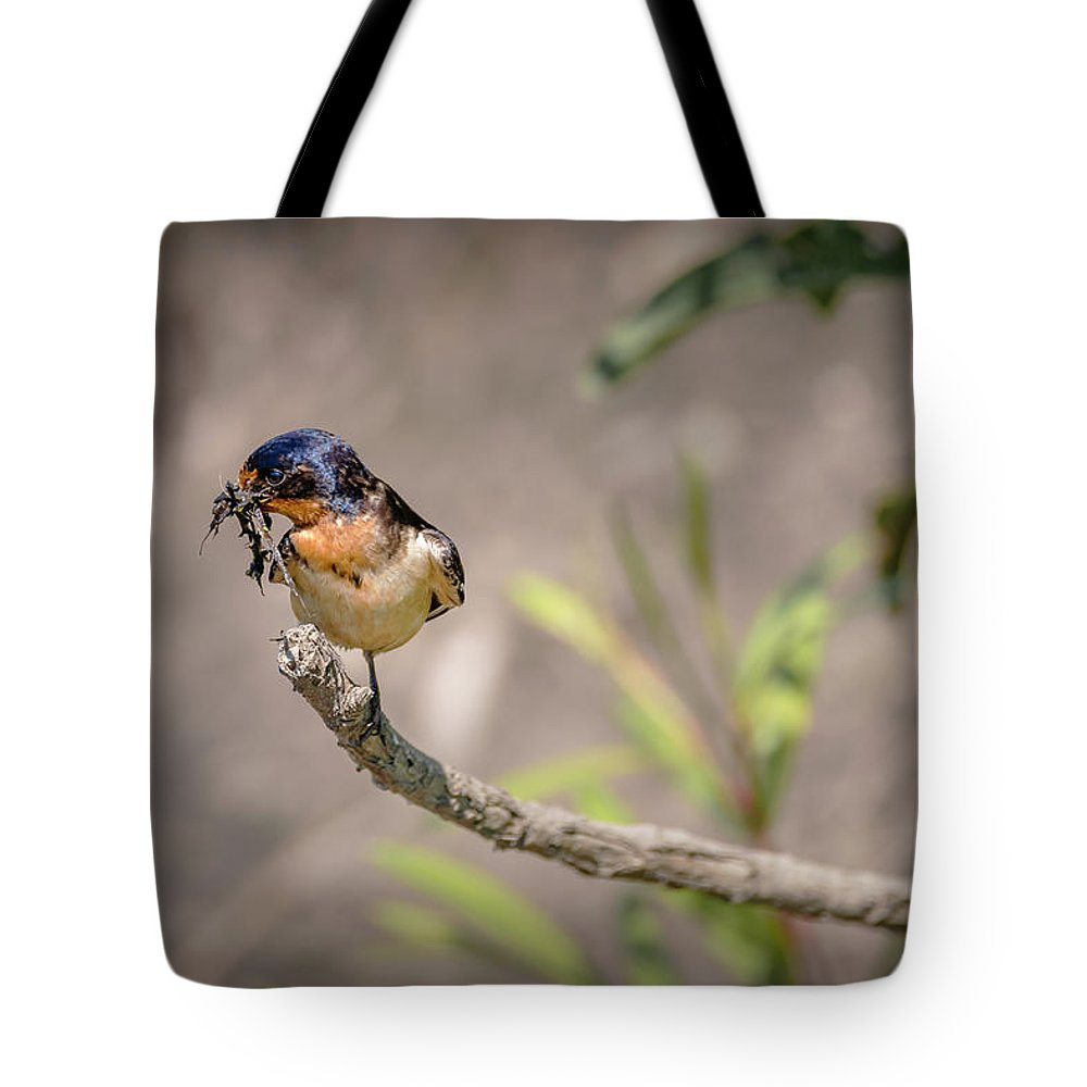 Bird Tote Bag featuring the photograph 20-0616-0528 by Anthony Roma