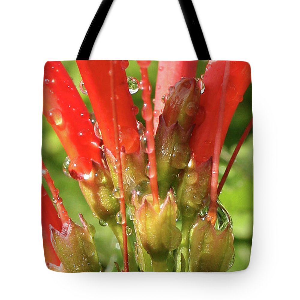 Tote Bag featuring the photograph Arizona Beauty by Randy Oberg
