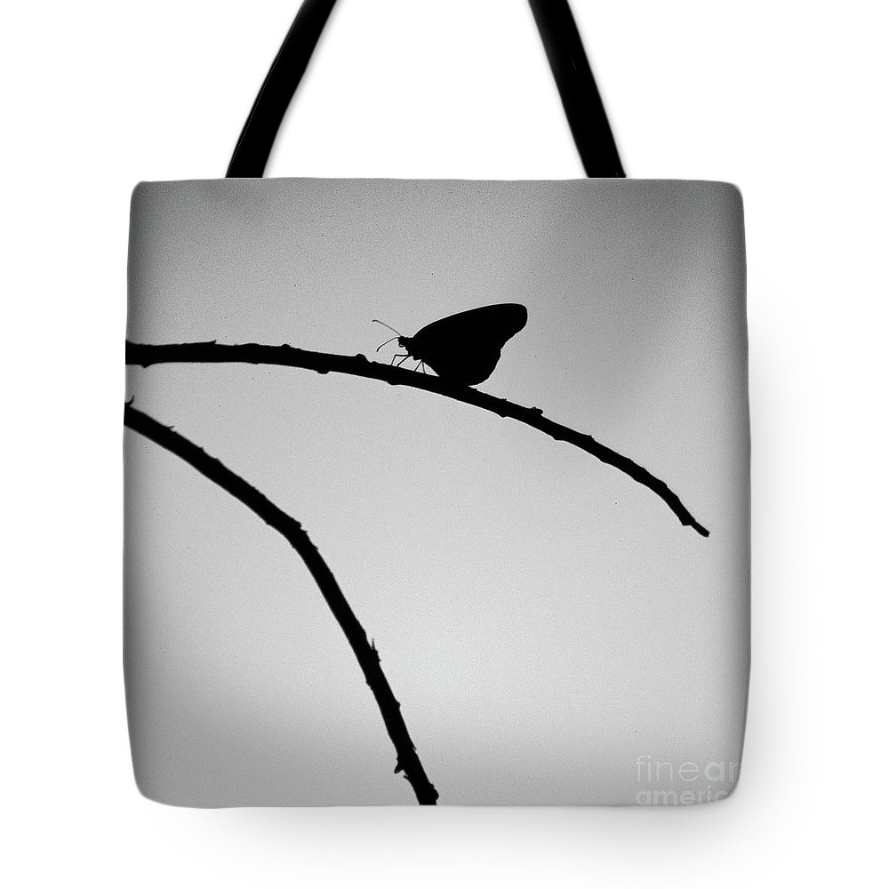 Butterfly Tote Bag featuring the photograph Art Imitates Life by Randy Oberg