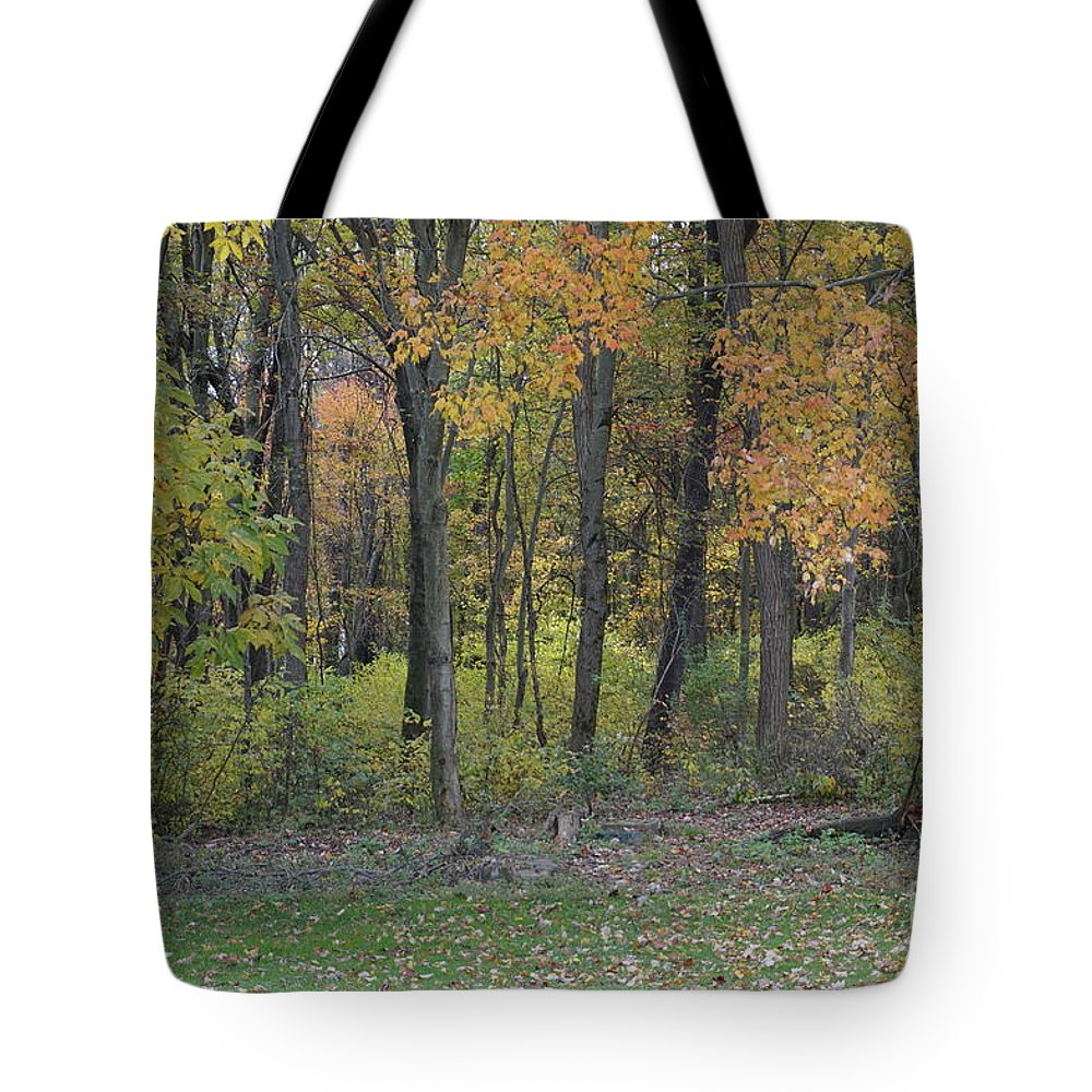 Wall Art Tote Bag featuring the photograph Back Yard View by Chris Naggy