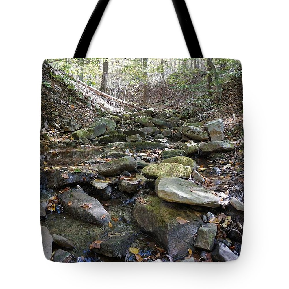 Wall Art Tote Bag featuring the photograph Bark Rocks 1 by Chris Naggy