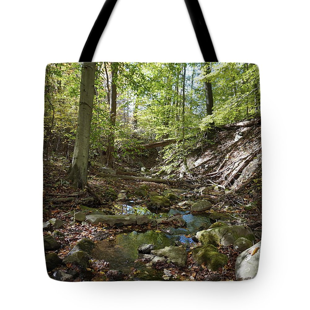 Landscape Tote Bag featuring the photograph Bark Rocks 2 by Chris Naggy